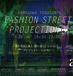 FASHION STREET PROJECTION
